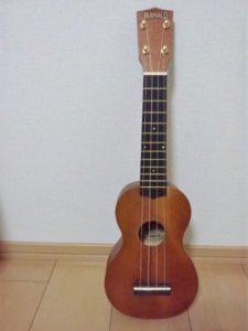 フラ伝統の楽器 ウクレレ イプ イプヘケ フラレッスン BMTスタジオ
